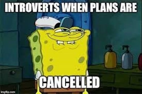 introverts plans cancelled meme