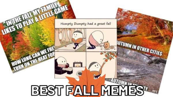 Funny Fall Memes 2021 – Autumn, Pumpkins, and More to Share