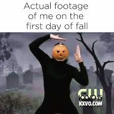 actual footage of me on the first day of fall meme
