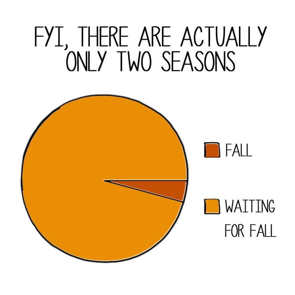 fall meme - fyi there are actually only two seasons