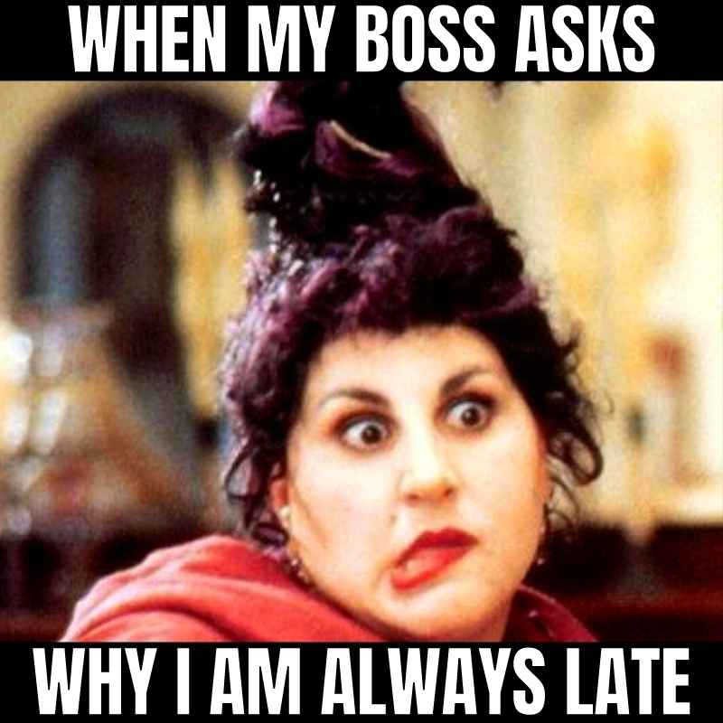 hocus pocus meme - when the boss asks why you are always late