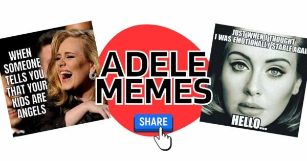 Adele Memes & Facts About the New Album, 30 and the Singer